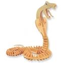 Snake Design