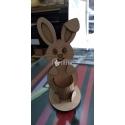 Little bunny Design