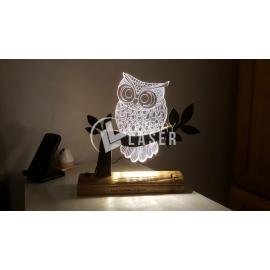 Owl engraved Design