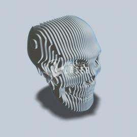 Cráneo Diseño