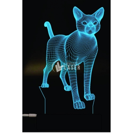 Engraved cat