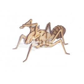 Hormiga Diseño