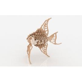 Diseño pez angel