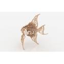 Design angel fish