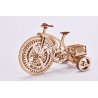 Triciclo mecánico diseño
