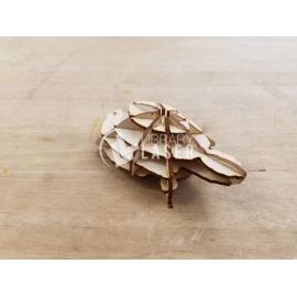 3D tortoise design