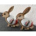 Rabbit Egg Design