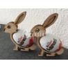 Diseño Conejo Huevo