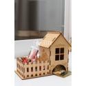 Mini House Design