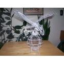 Águila Diseño