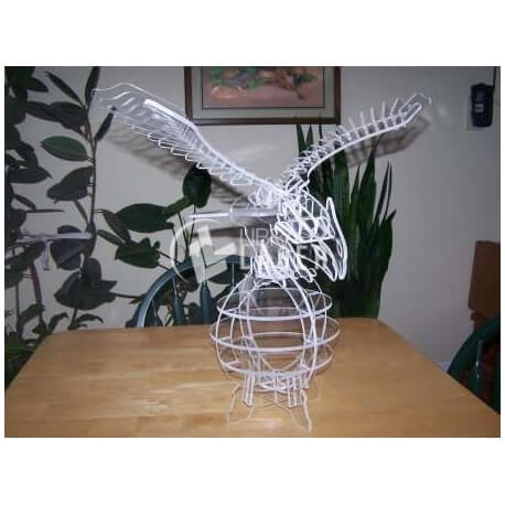 Eagle Design