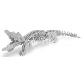 Crocodile Design