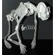 Diseño de Esqueleto de Mono