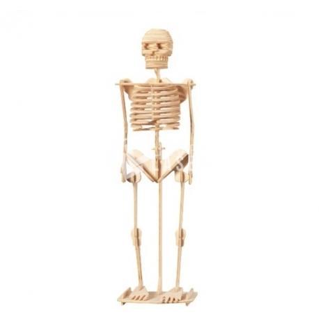 Diseño de Esqueleto